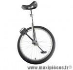 Monocycle 20 pouces argent (selle noire 300 mm) - Accessoire Vélo Pas Cher - Autres vélos complet