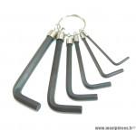 Déstockage ! Jeu de 6 clés Allen (Hex) 2/3/4/5/6/7mm avec anneau porte-clés